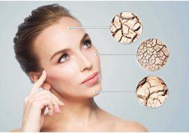Comment choisir les meilleurs hydratants pour votre peau sèche